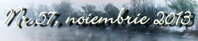 2013-11-29_21104522