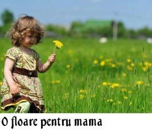 O floare pentru mama