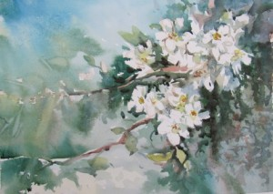 Eugen măcinic primăvara IMG_0593(1)