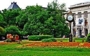Parcul Inverzit din Mijlocul Cenusiu al Orasului