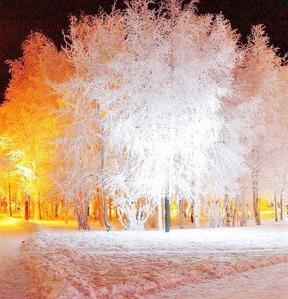 foto-iarna2